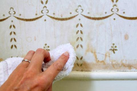 Ev Temizliğinde 10 Pratik Bilgi