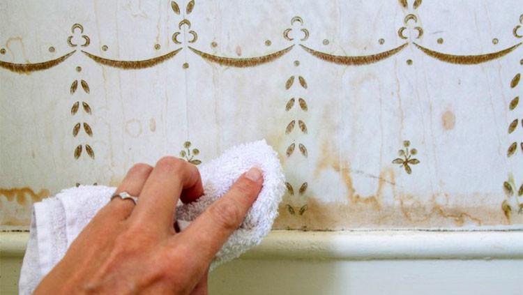 duvar kağıdı lekeleri